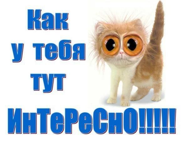 http://zdesvsyo.ru/_ph/207/2/768645060.jpg