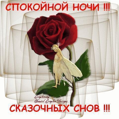 Спокойной ночи картинки с надписями, открытки красивые