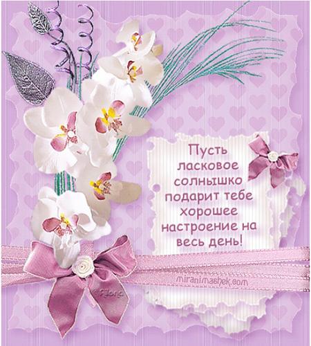 Хорошего настроения картинки с надписями, открытки красивые