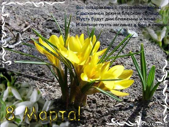 8 марта стихи открытки картинки красивые