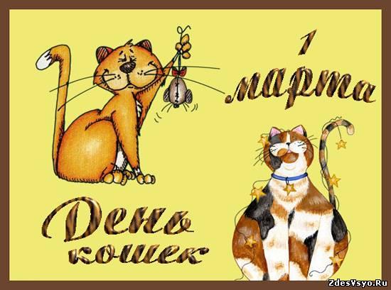 С днём кошек открытки картинки красивые