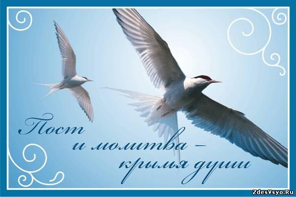 С Великим постом открытки картинки красивые
