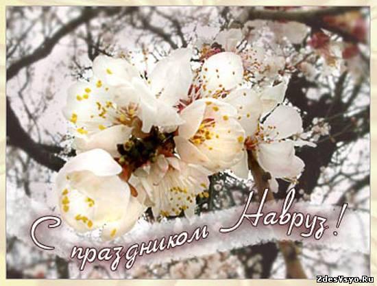 http://zdesvsyo.ru/_ph/322/2/711600781.jpg