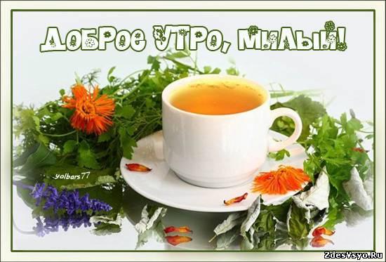 Доброе утро милый Картинки про утро красивые