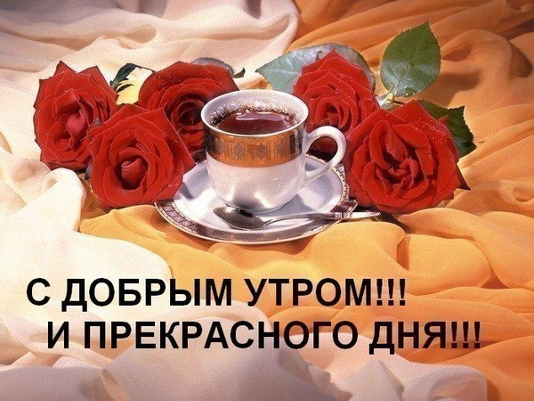 Утро и день Картинки про утро красивые